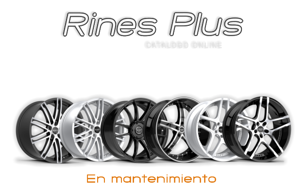 Rines Plus - Mantenimiento